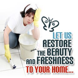 Carpet Cleaners - Residential and commercial Cleaning