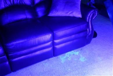 An example of a pet stain under UV light