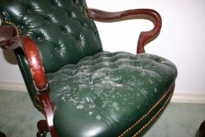 Mold on leather can be really difficulty to remove if you don't know the tricks